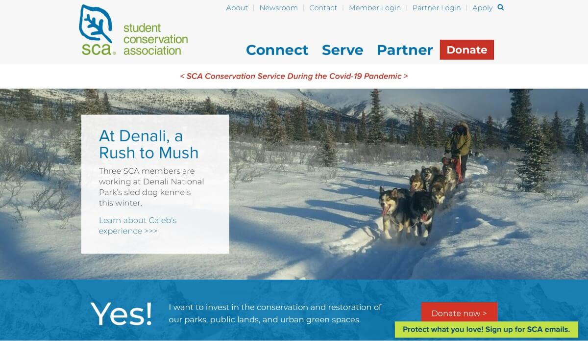 Examples of nonprofit websites to inspire for web design projects